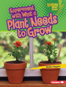 what a plant needs