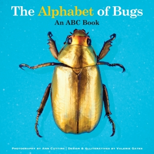 alphabet of bugs