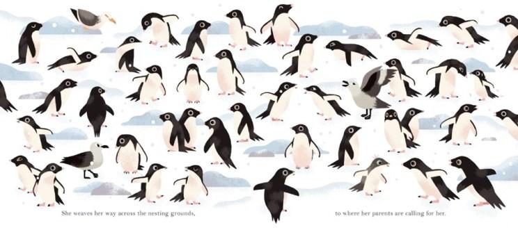 antarctic_5