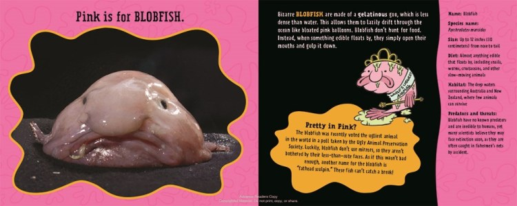 Blobfish Facts For Kids