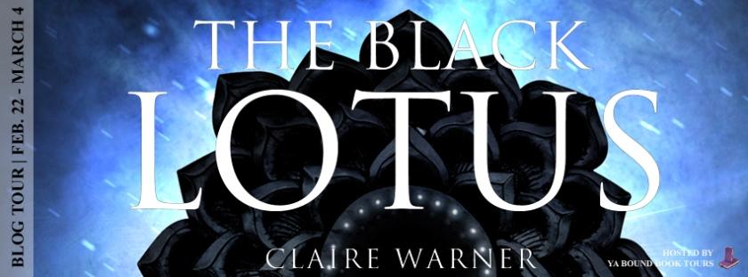 The black lotus tour banner