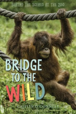 bridge-to-the-wild