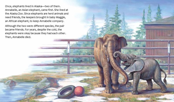 Image result for maggie alaska's last elephant